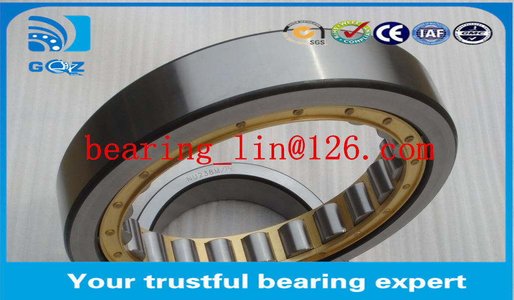 Specialize GCR15 Big Cylindrical Roller Bearing NNU4148 Wear Resistant